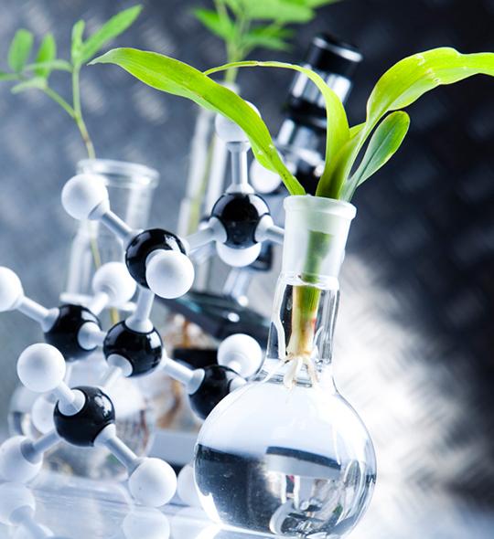 ¿Cómo funciona el ácido hipocloroso?